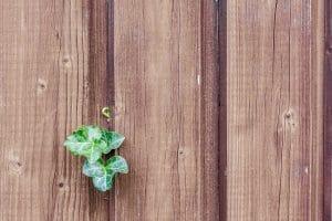 Pourquoi installer des claustras dans son jardin ?