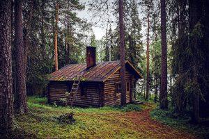 Quels sont les avantages d'un abri de jardin en bois ?